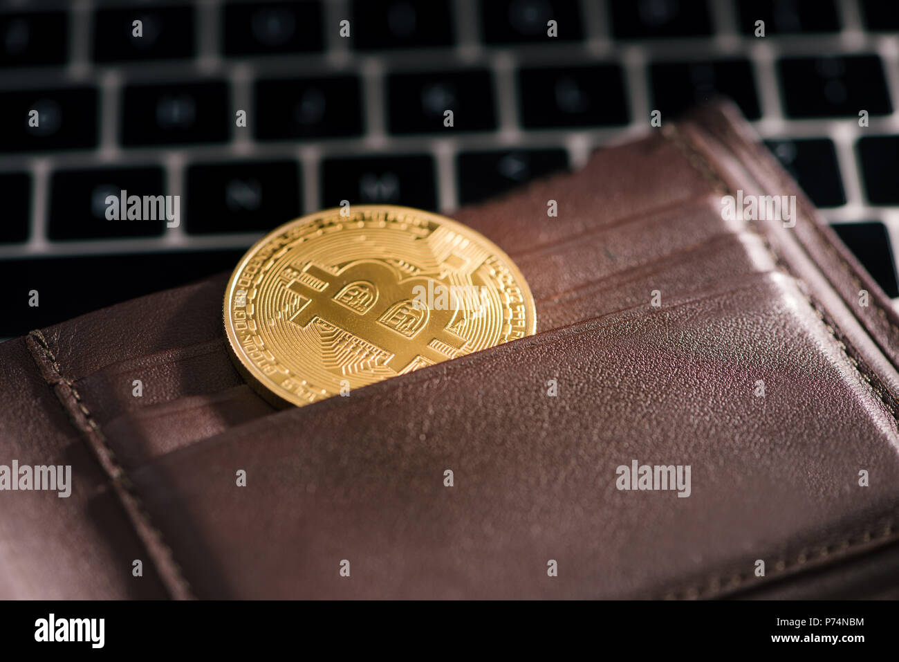 bronze crypto currency wallet