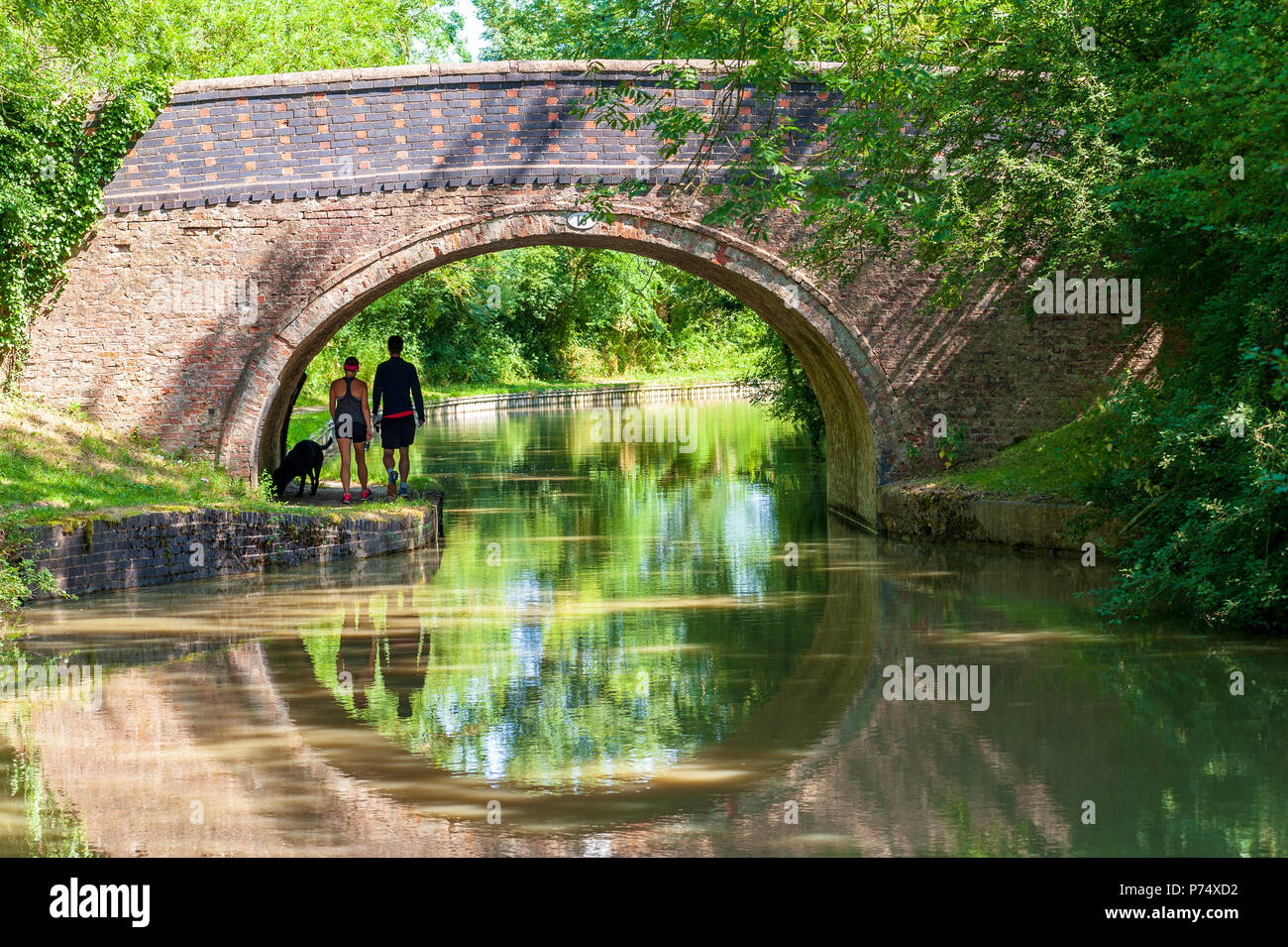 two walkers and their dog walk the towpath  under a bridge alongside the Grand Union canal close to Crick, England in summertime - Stock Image