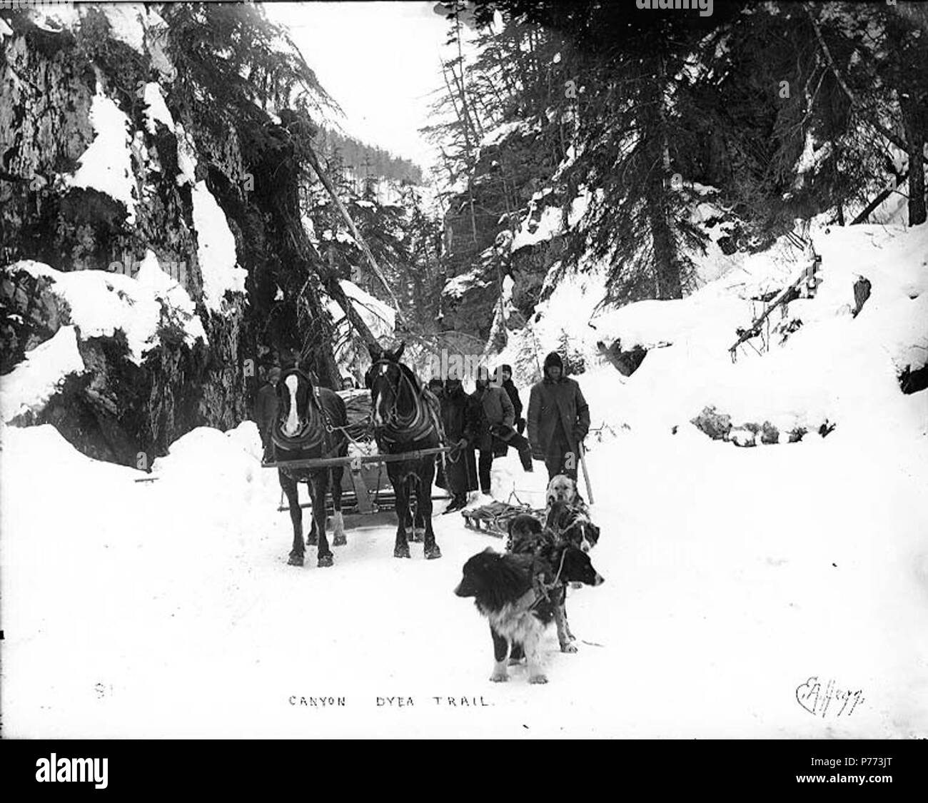 . English: Klondikers with horse drawn sled and dogsled at Canyon, Chilkoot Trail, Alaska, 1897. English: Caption on image: 'Canyon Dyea Trail' Original image in Hegg Album 1, page 14 . Klondike Gold Rush. Subjects (LCTGM): Canyons--Alaska--Chilkoot Trail; Sled dogs--Alaska--Chilkoot Trail; Sleds & sleighs--Alaska--Chilkoot Trail; Horses--Alaska--Chilkoot Trail Subjects (LCSH): Chilkoot Trail; Trails--Alaska  . 1897 7 Klondikers with horse drawn sled and dogsled at Canyon, Chilkoot Trail, Alaska, 1897 (HEGG 7) - Stock Image