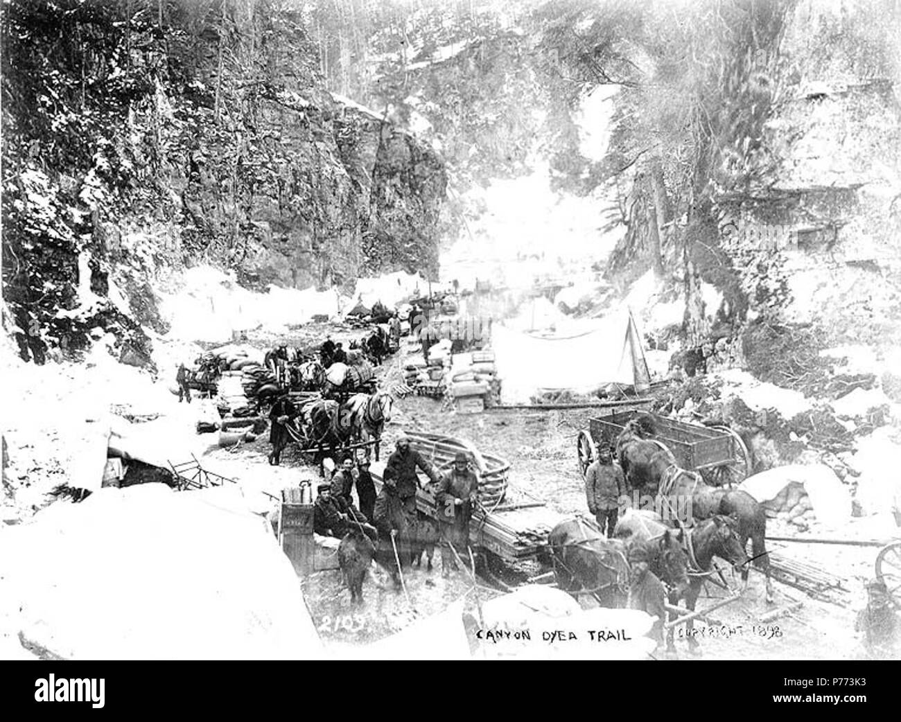 . English: Klondikers with horse drawn wagons and sled at Canyon, Chilkoot Trail, Alaska, 1898. English: Caption on image: 'Canyon, Dyea Trail c. 1898' Original image in Hegg Album 1, page 27 . Klondike Gold Rush . Additional image in PH Coll 557.2 Subjects (LCTGM): Canyons--Alaska; Horses--Alaska-; Carts & wagons--Alaska; Tents--Alaska Subjects (LCSH): Chilkoot Trail; Trails--Alaska  . 1898 7 Klondikers with horse drawn wagons and sled at Canyon, Chilkoot Trail, Alaska, 1898 (HEGG 187) - Stock Image