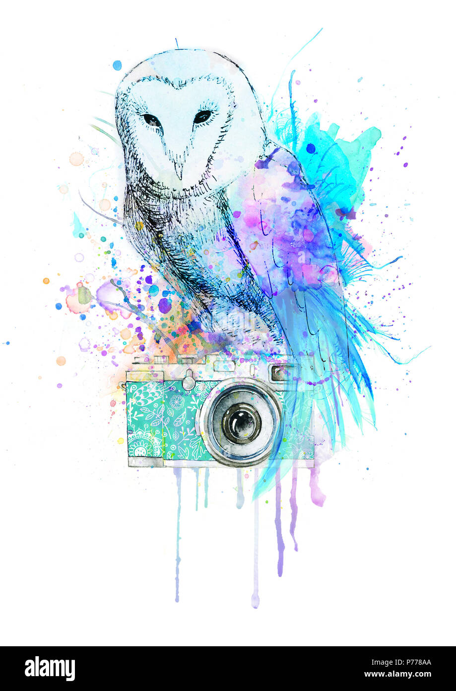 Watercolor owl with camera - Stock Image