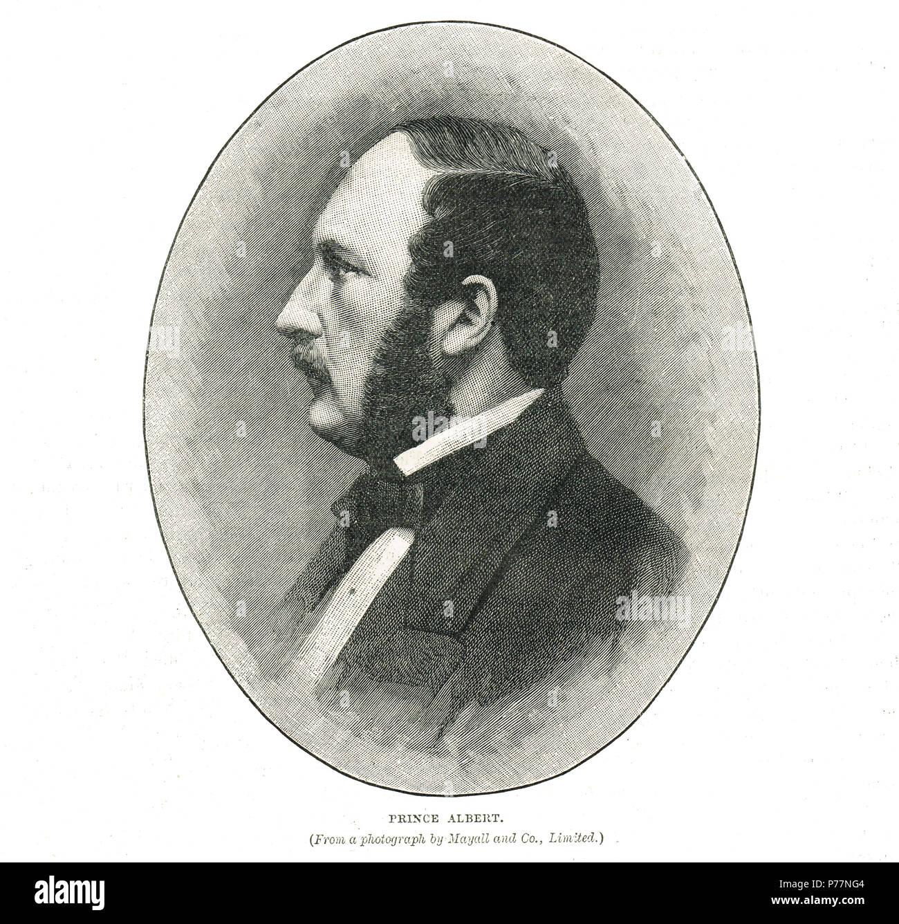 Prince Albert, consort of Queen Victoria - Stock Image