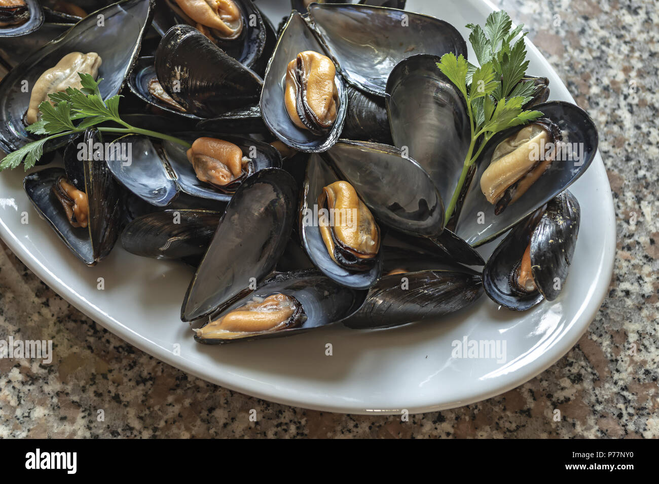 Mussels 5 - Stock Image