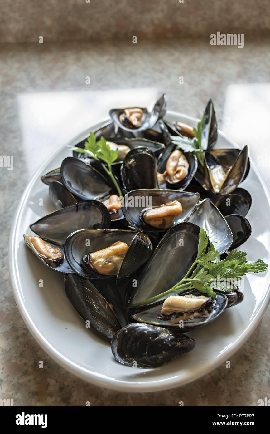 Mussels 7 - Stock Image