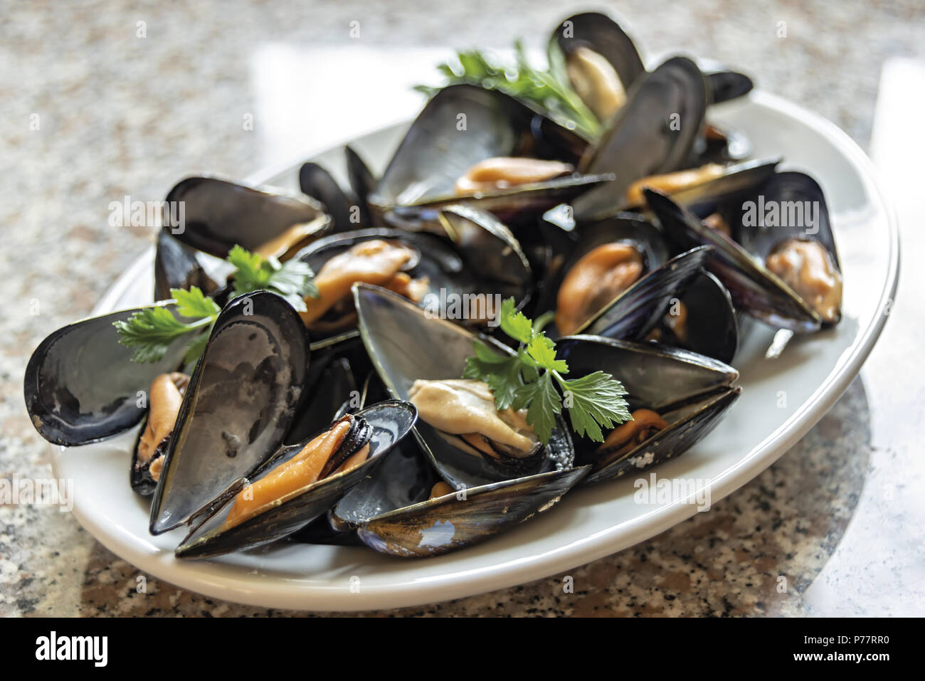 Mussels 12 - Stock Image