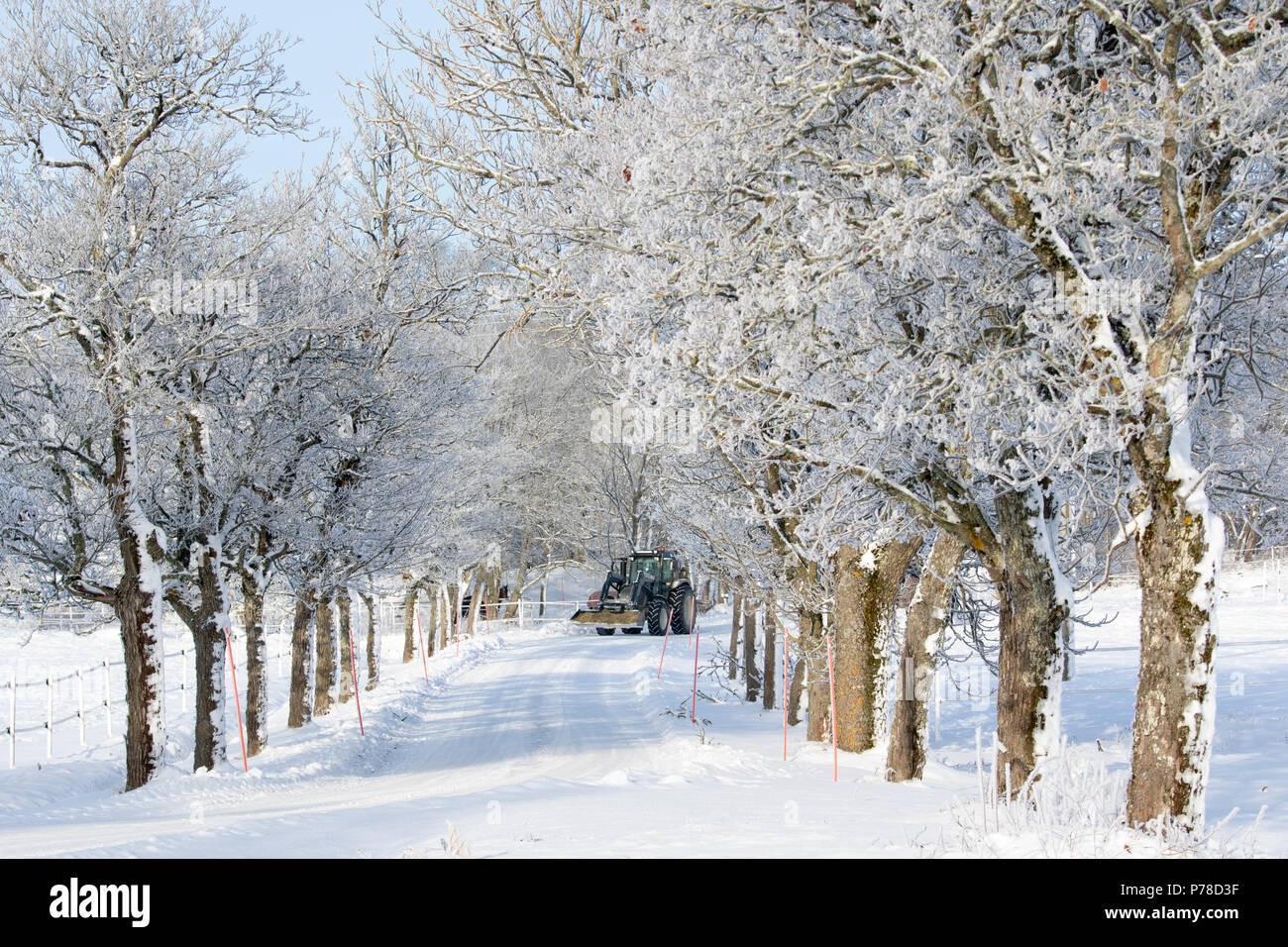 tractor on winter road - Stock Image