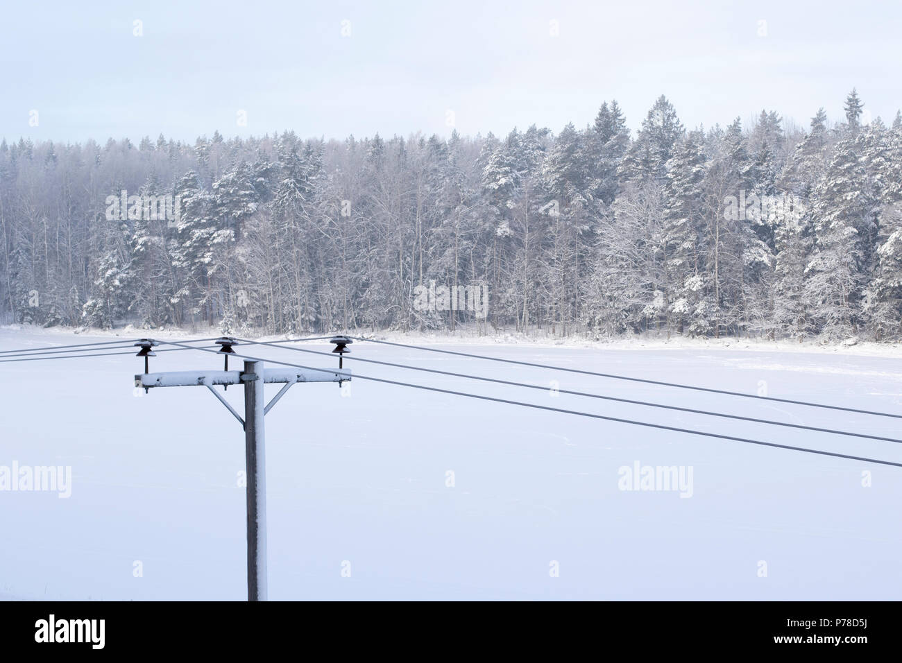 Frozen high voltage line - Stock Image