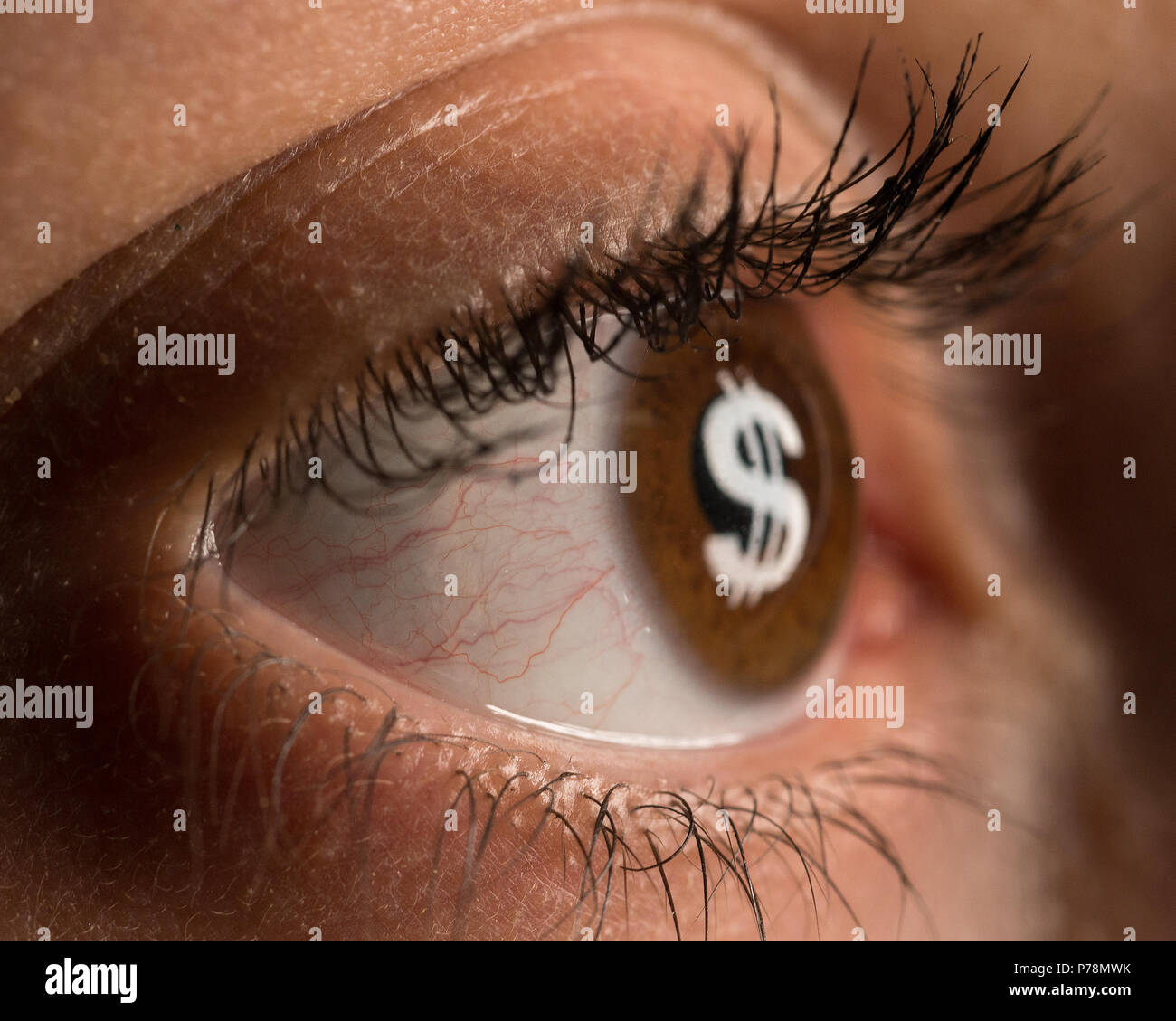 Addiction to Money - Stock Image