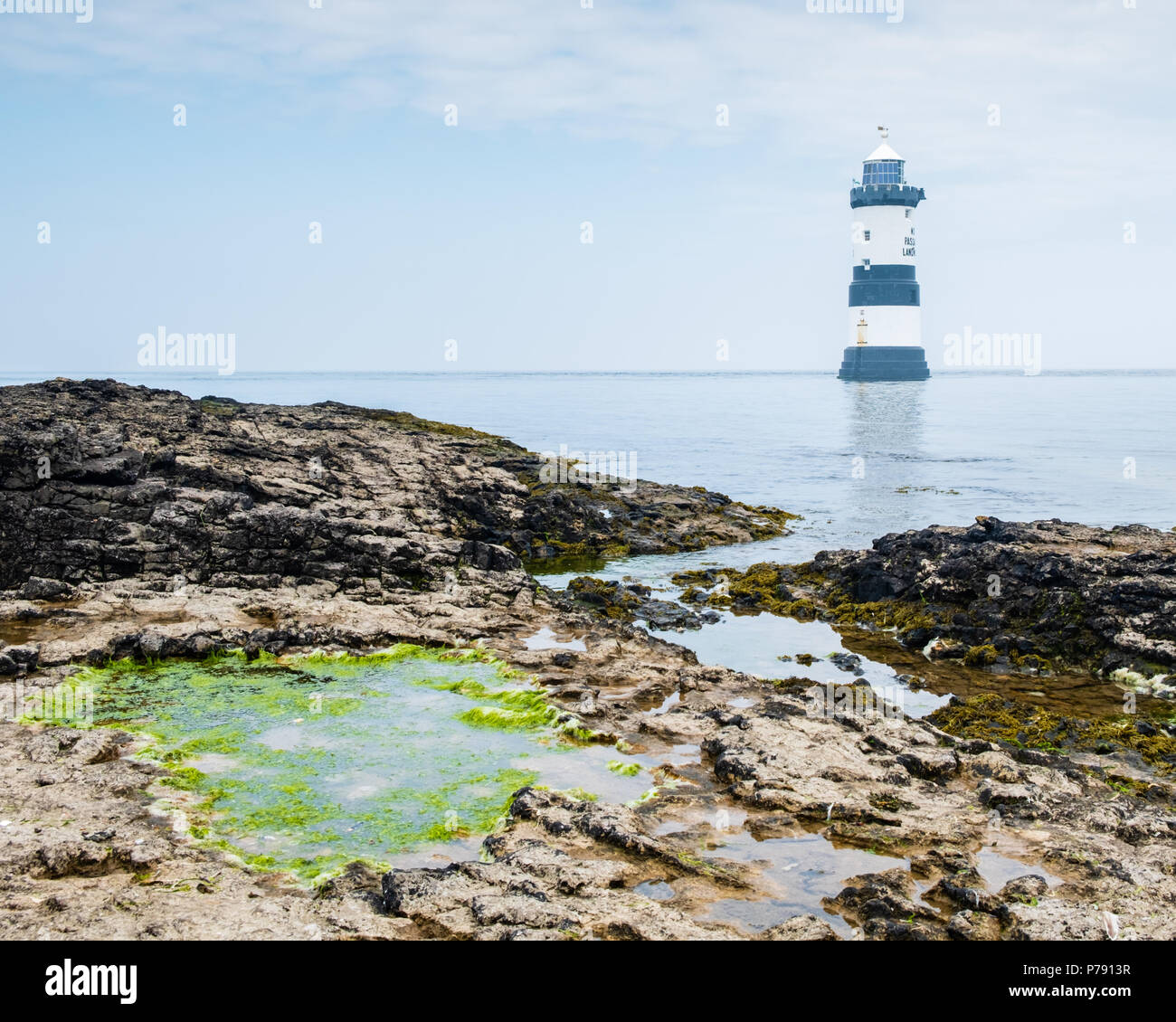 Penmon Lighthouse near Beaumaris, Anglesey, on a bright, sunny day with rocks and green algal rock pool in the foreground and a blue sky - Stock Image