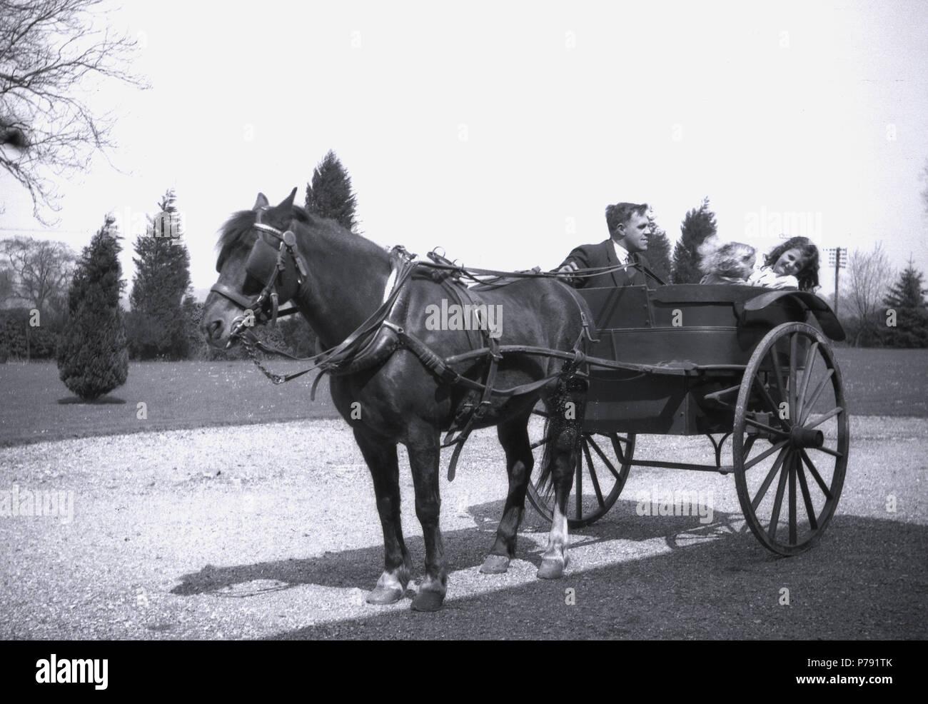 two wheeled horse drawn carriage stock photos two wheeled horse
