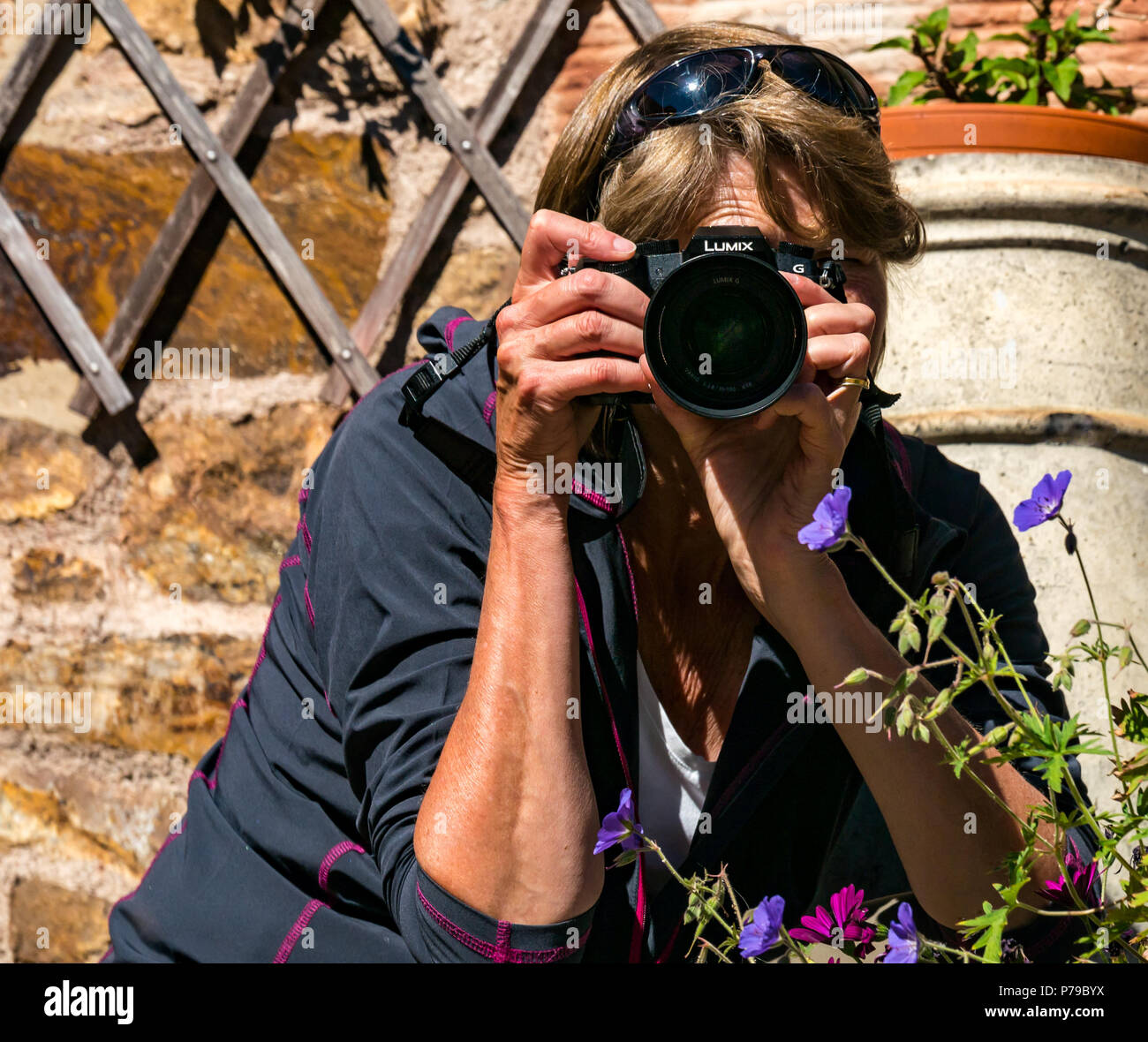 Older woman photographer wearing sunglasses taking photo in sunny garden with Panasonic Lumix G7 micro four thirds camera, looking into camera - Stock Image