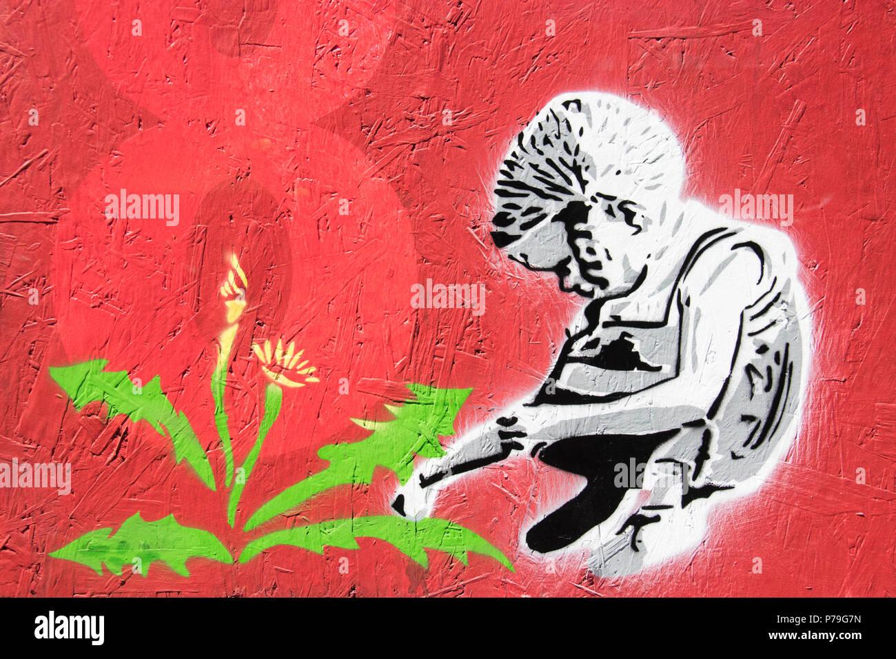 Weeds - Stock Image
