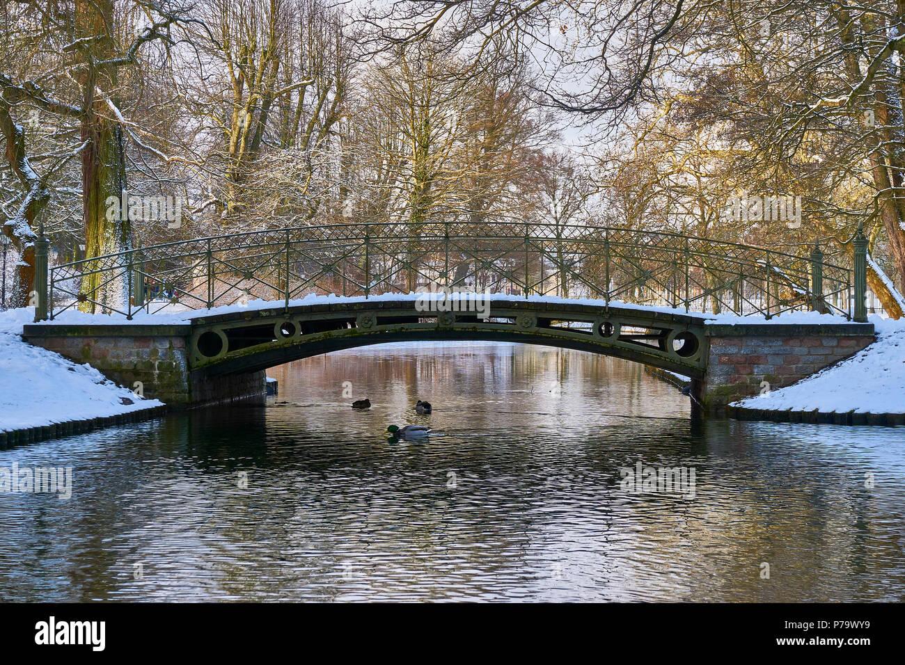 Winter in the Schwerin castle garden. - Stock Image