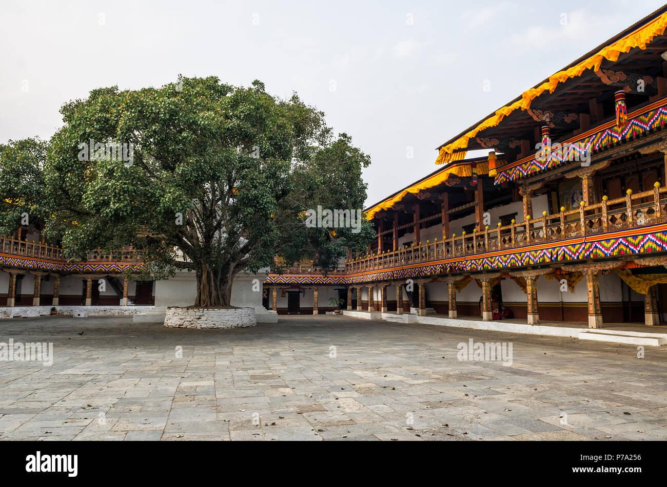 Punakha Dzong and bodhi tree, Bhutan - Punakha Dzong or Pungthang Dewachen Phodrang (Palace of Great Happiness) in Punakha, the old capital of Bhutan. - Stock Image