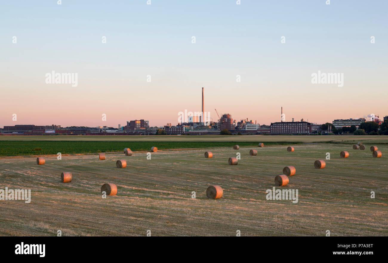 Krefeld, Uerdingen, Blick von der anderen Rheinseite auf die Bayer-Werke (Chemie-Park) und den Schornstein der Müllverbrennungsanlage Stock Photo