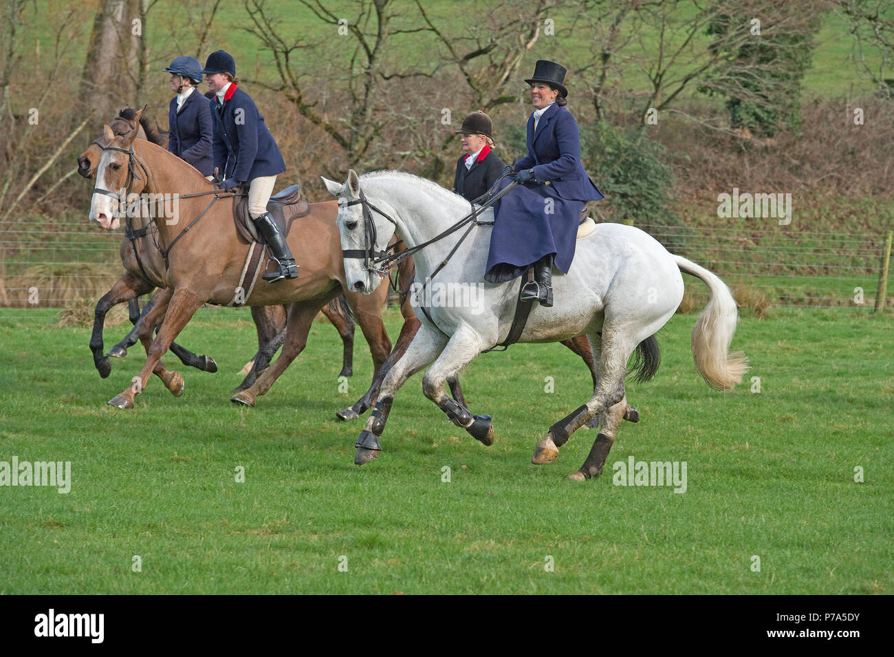 67952bb79d53 Riding Habit Stock Photos   Riding Habit Stock Images - Alamy