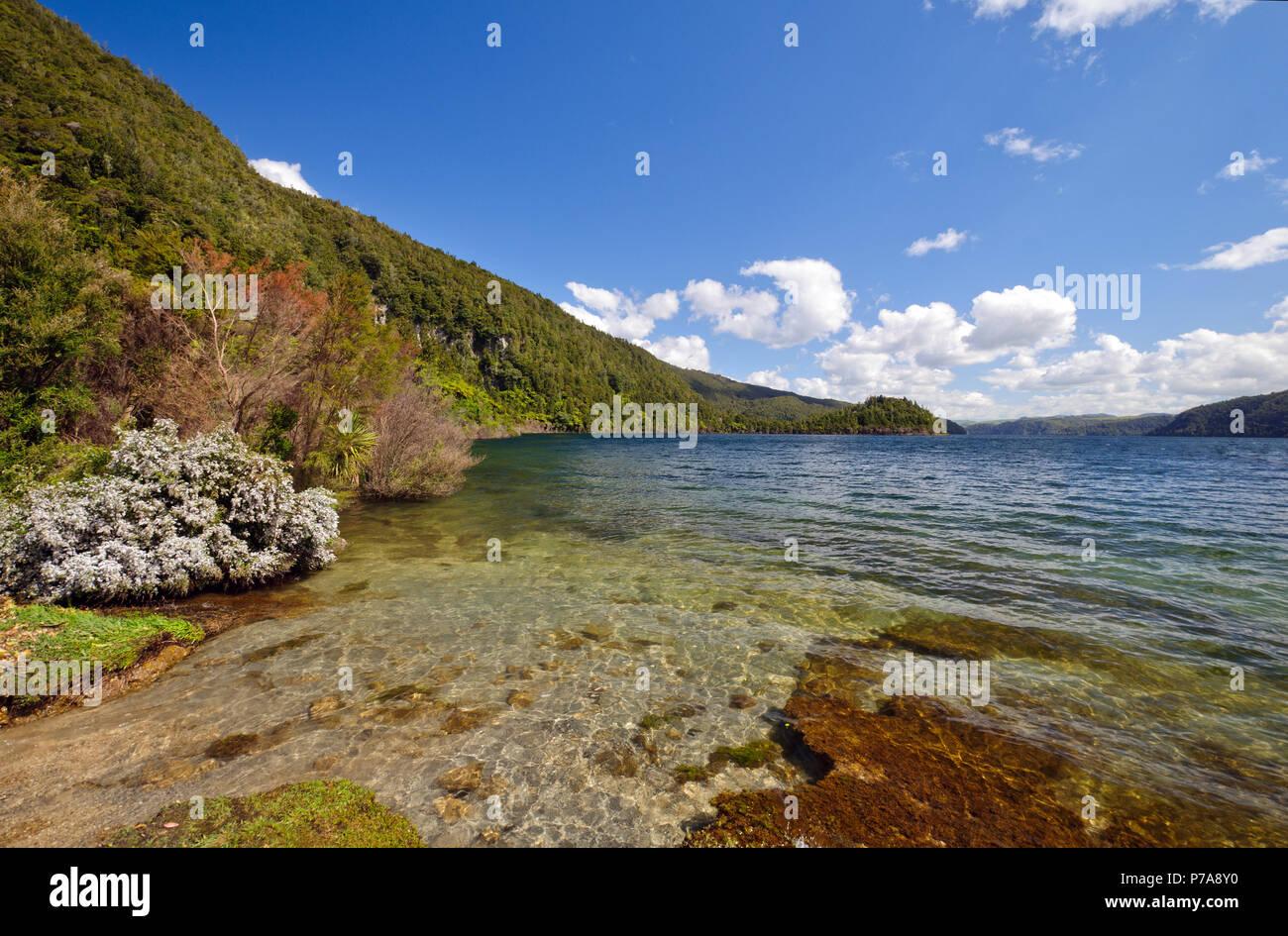 Shallows of Lake Okataina in New Zealand Stock Photo