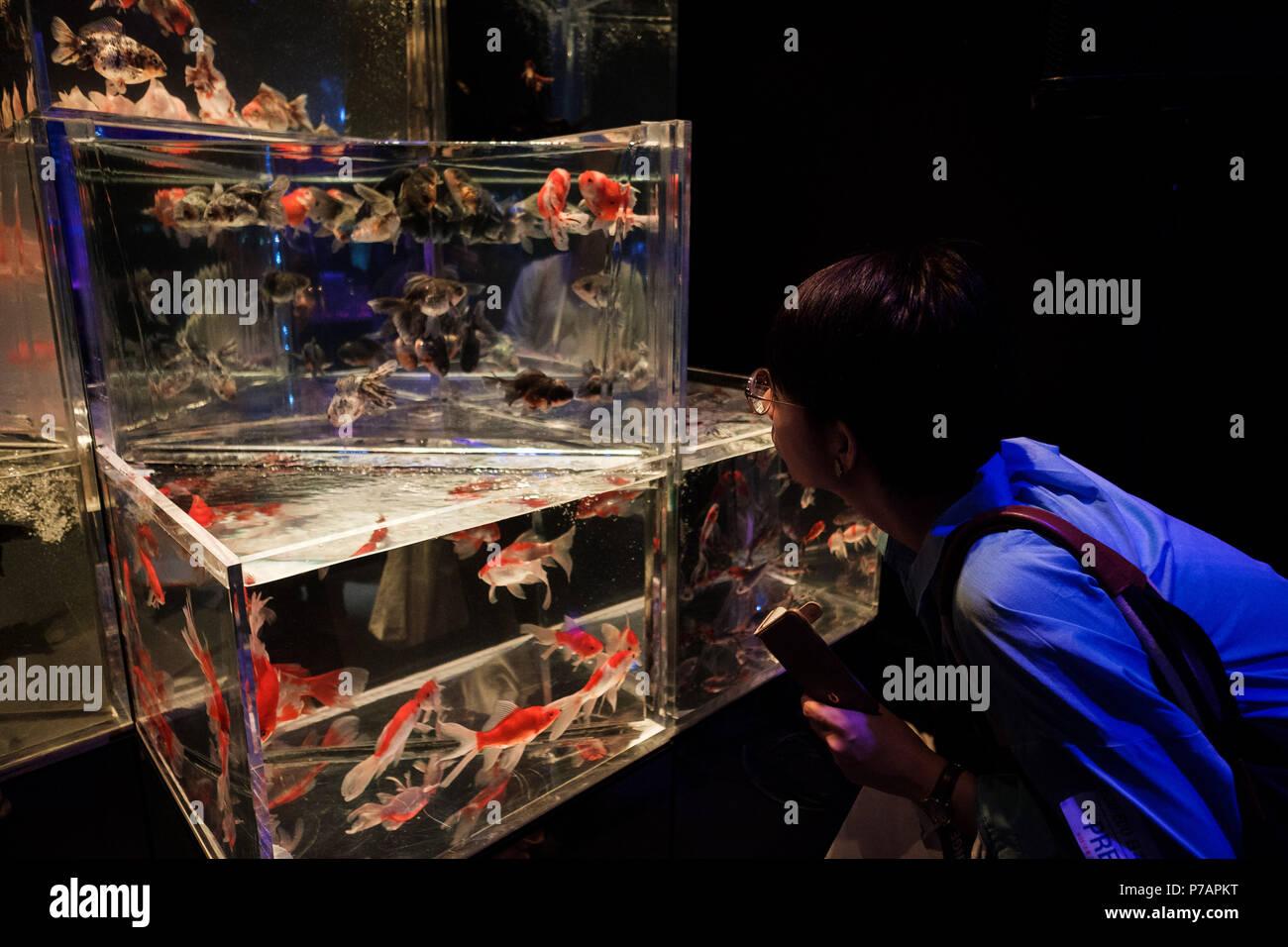 tokyo japan 5th july 2018 a visitor looks at a tank at art