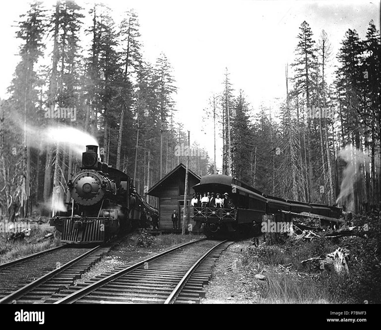 English: Two trains probably of the Tacoma Eastern Railroad