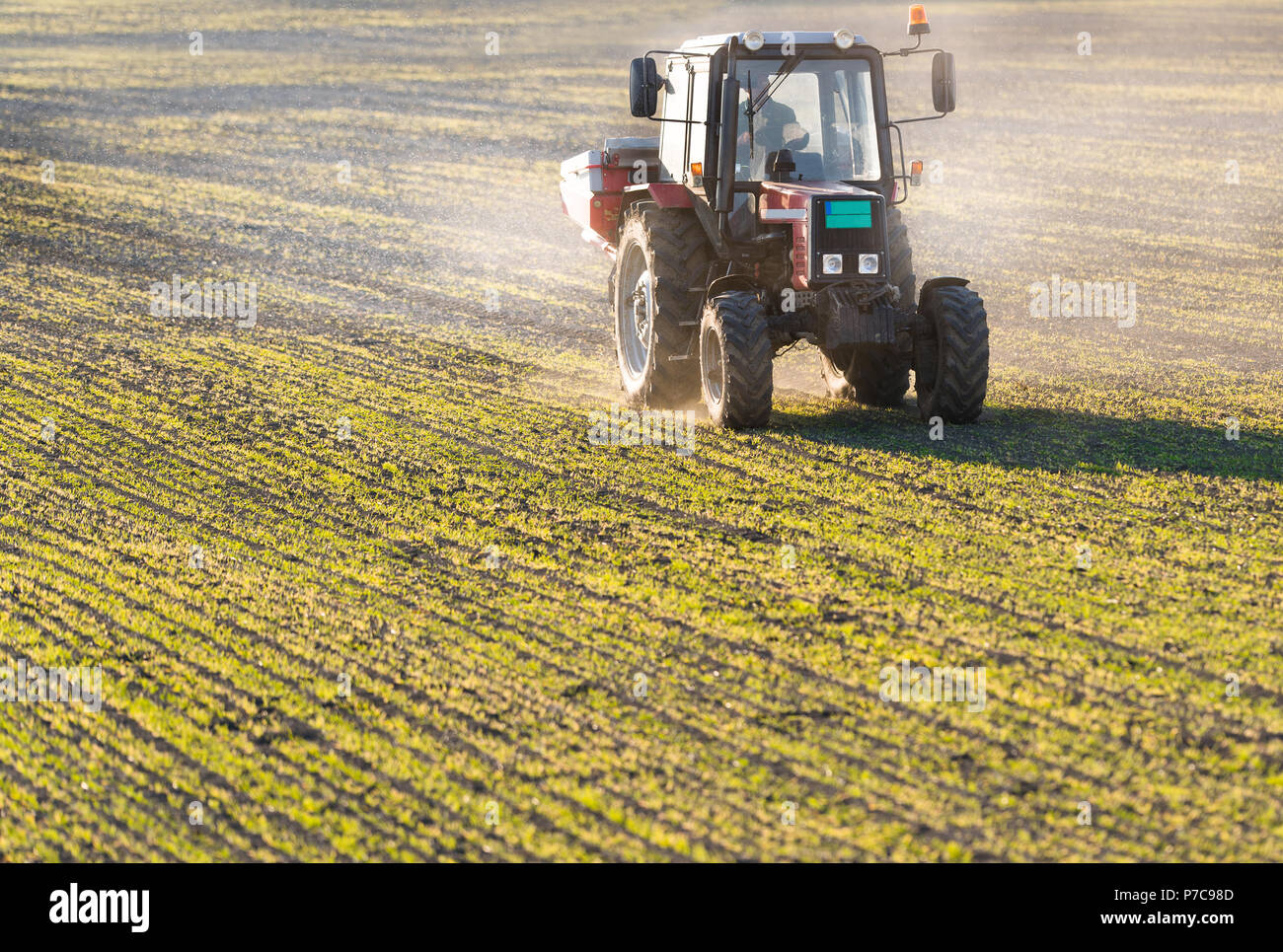 Tractor spreading artificial fertilizers  in field - Stock Image