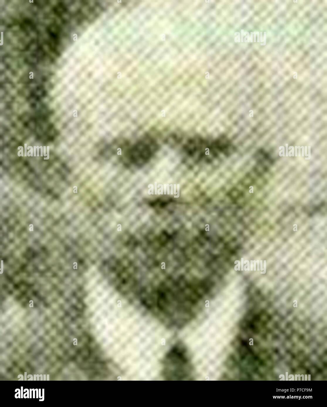 1931-05-31 Foto vom Sozialdemokratischen Ärztetag 001. - Stock Image