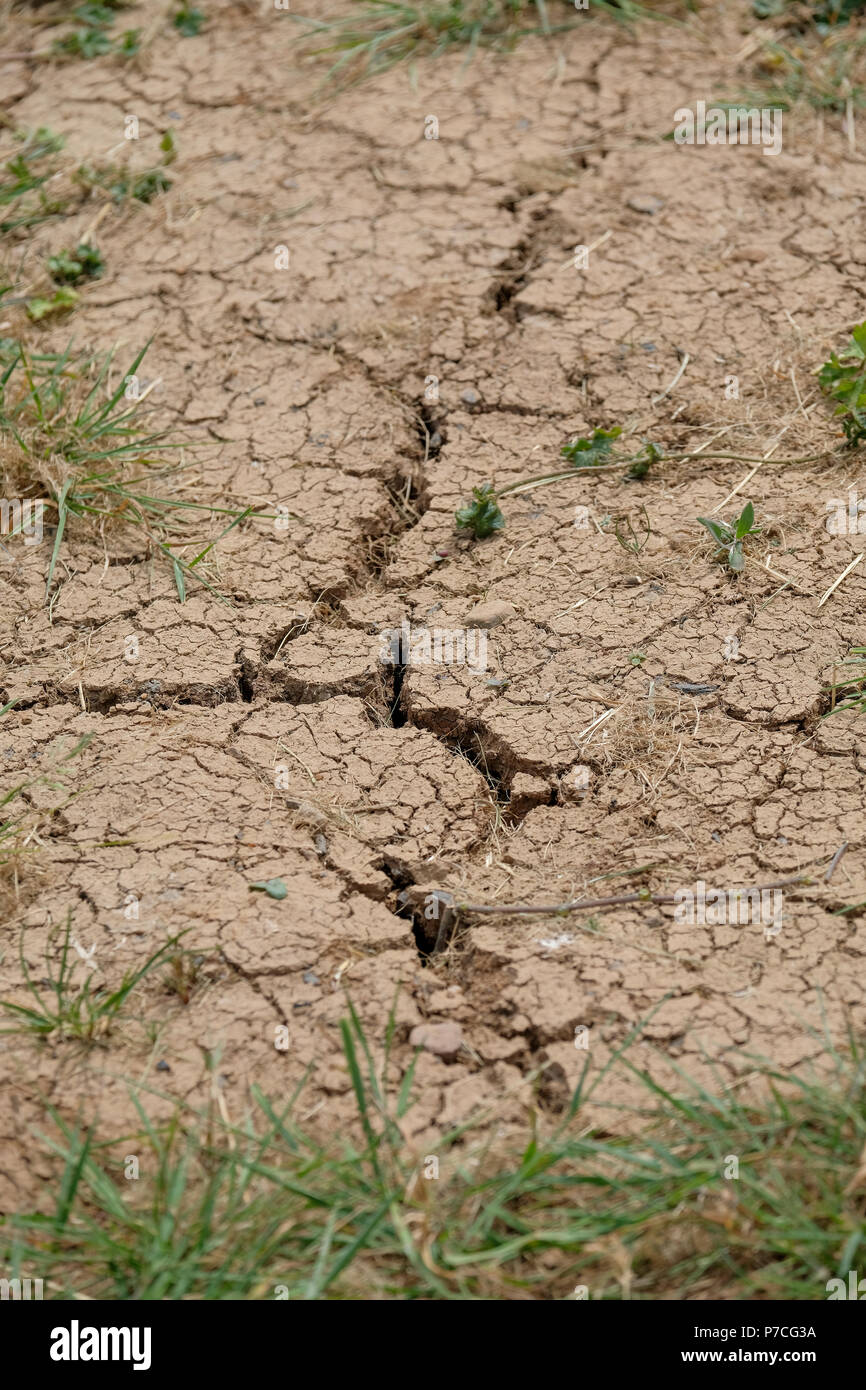 Forest of Dean Gloucestershire 4th July 2018 UK weather. As the heat wave continues cracks appear in soil.  With little to no rain fall across the cou - Stock Image