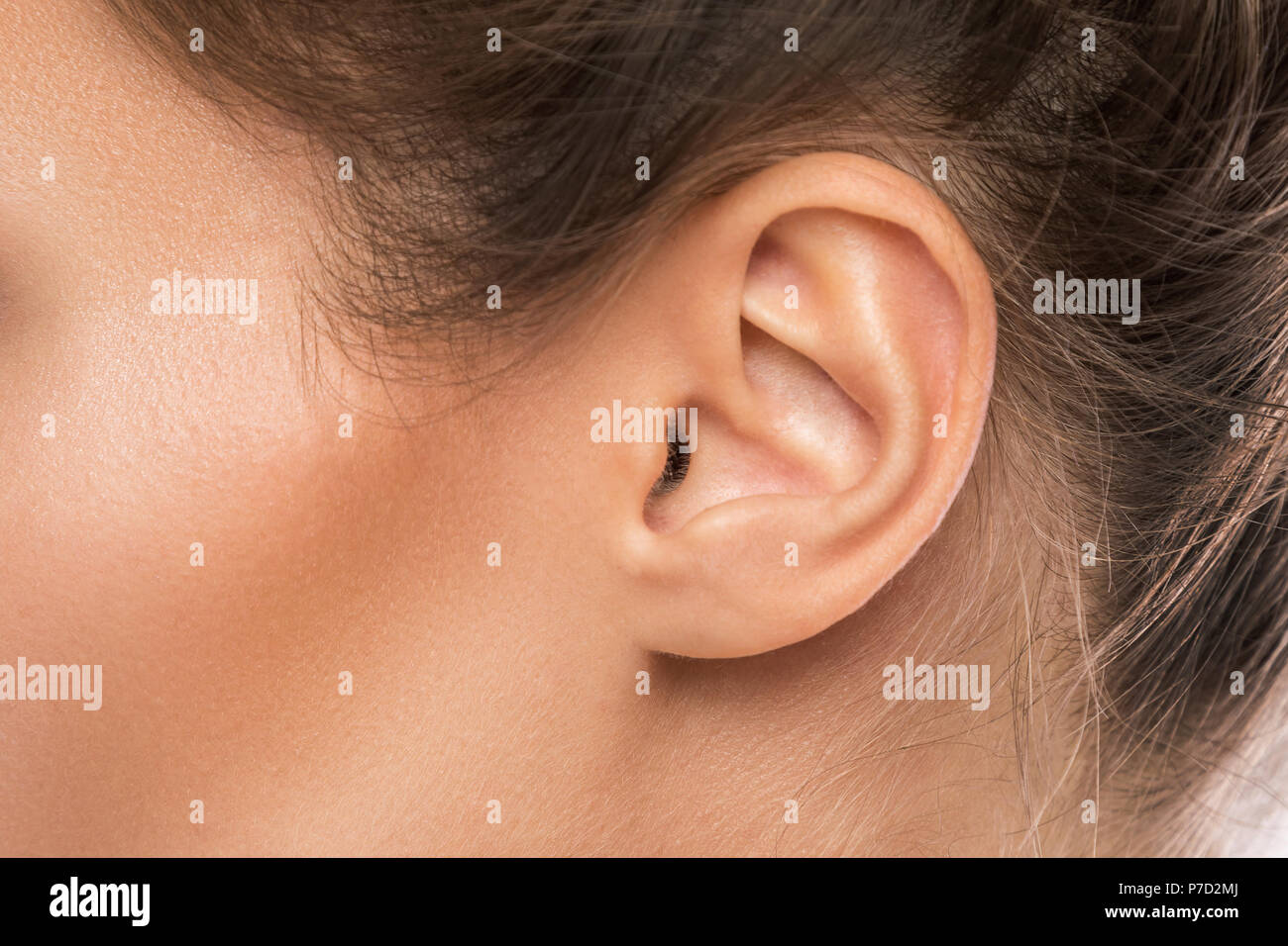 Close-up of female ear - Stock Image