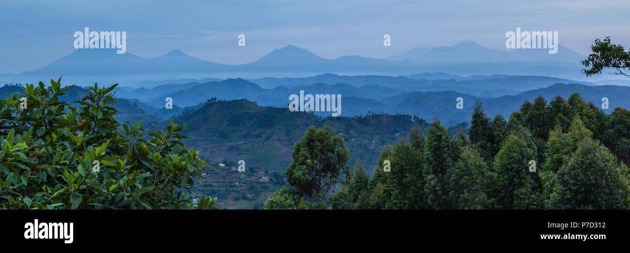 Tropical rainforest, Central African hills, Virunga volcanoes in the background, Bwindi Impenetrable National Park, Uganda - Stock Image