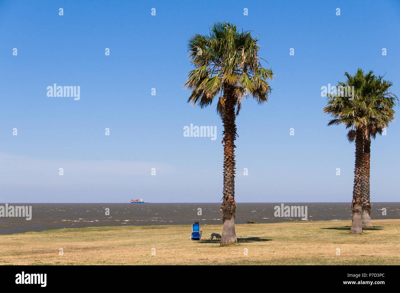Man alone with deckchair at the Rambla, promenade at the Rio de la Plata, Montevideo, Uruguay - Stock Image