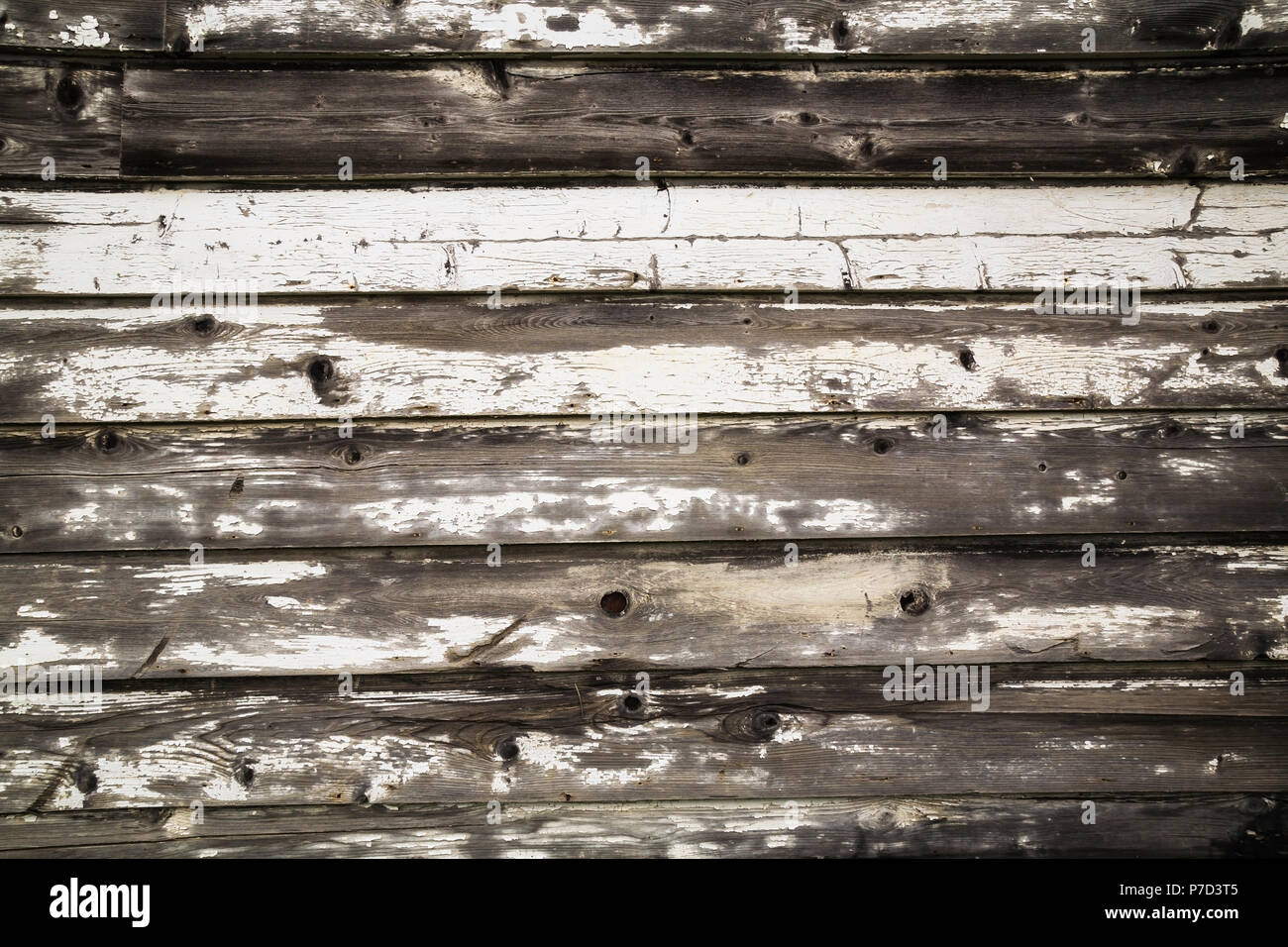 Close-up of old wooden grey and white painted barn wood planks, background image - Stock Image