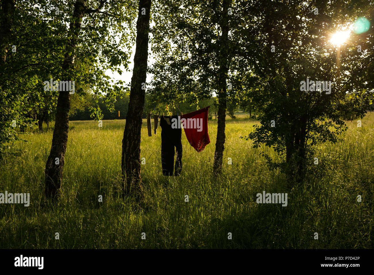 Western Piedmont, Northern Italy: Rural landscape - Stock Image
