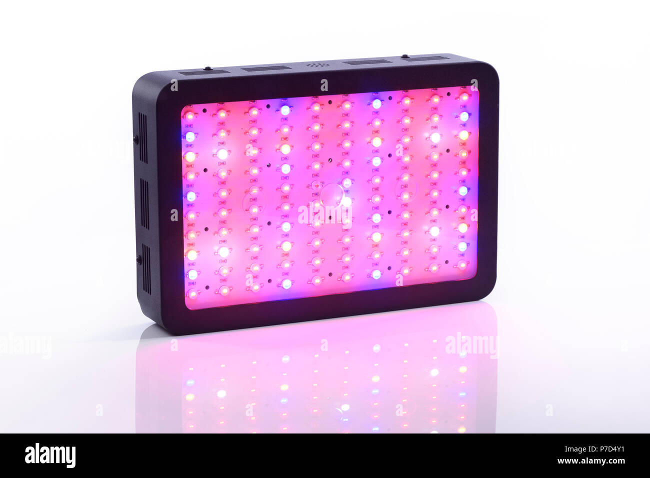 Full-spectrum LED grow light for indoor plant vegetative and flowering growth emitting red, blue, UV and IR spectrum - Stock Image