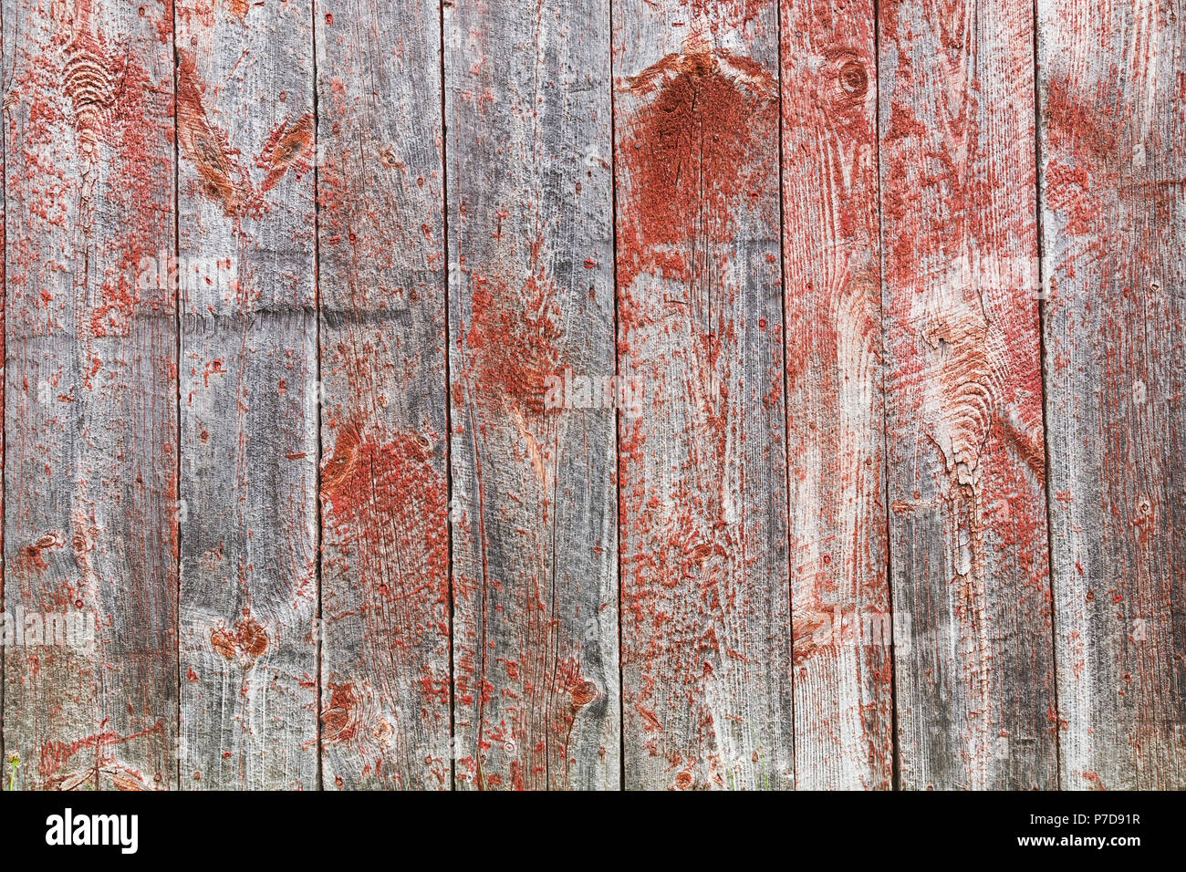 Close-up of old wooden grey and red painted barn wood planks, background image - Stock Image