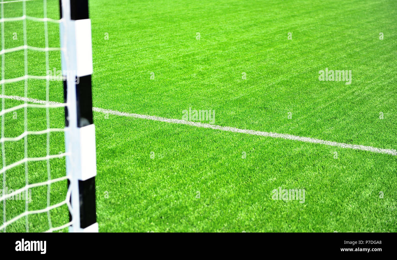 Football arena with green grass field  background - Stock Image