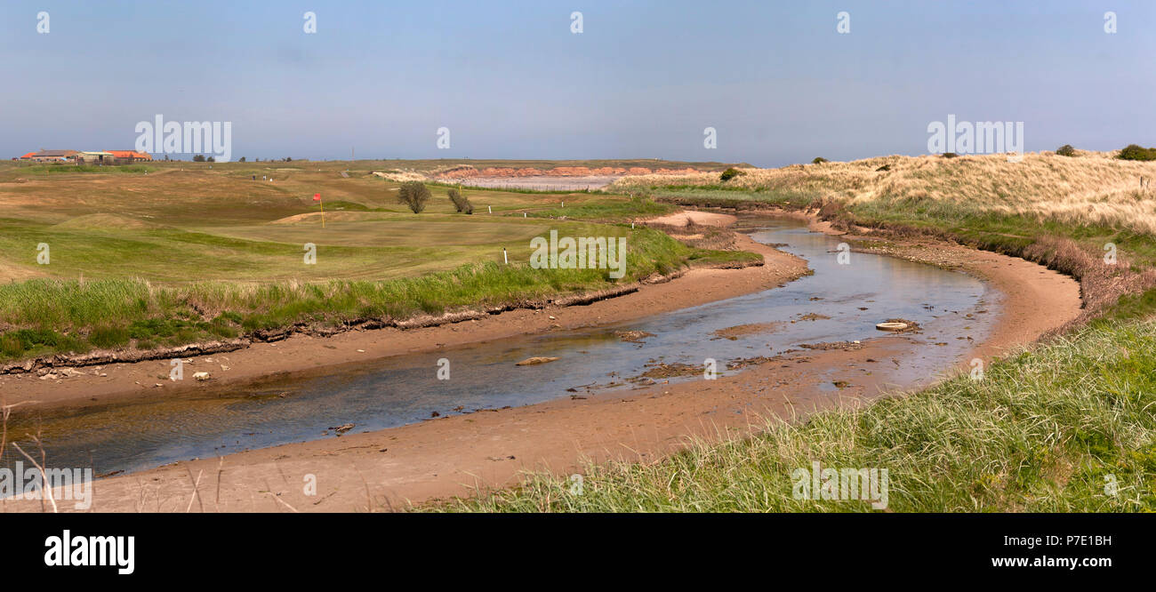 Seahouse golf course, Northumberland - Stock Image