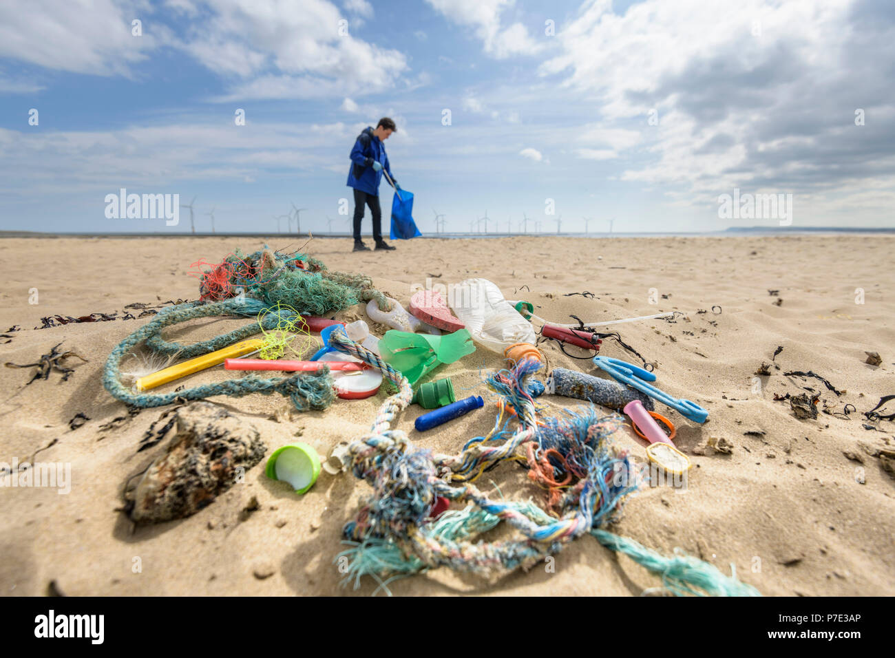 Man picking up plastic pollution collected on beach, North East England, UK - Stock Image