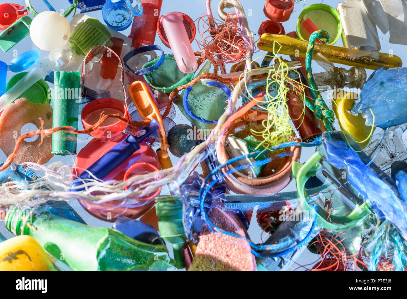 Discarded and polluting plastics collected from beach in North East England, UK - Stock Image