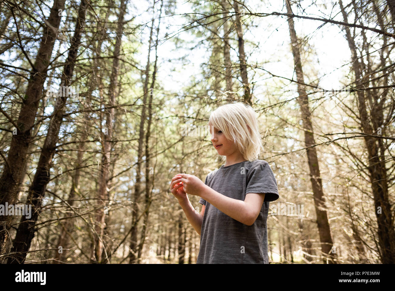 Blonde haired boy in forest - Stock Image