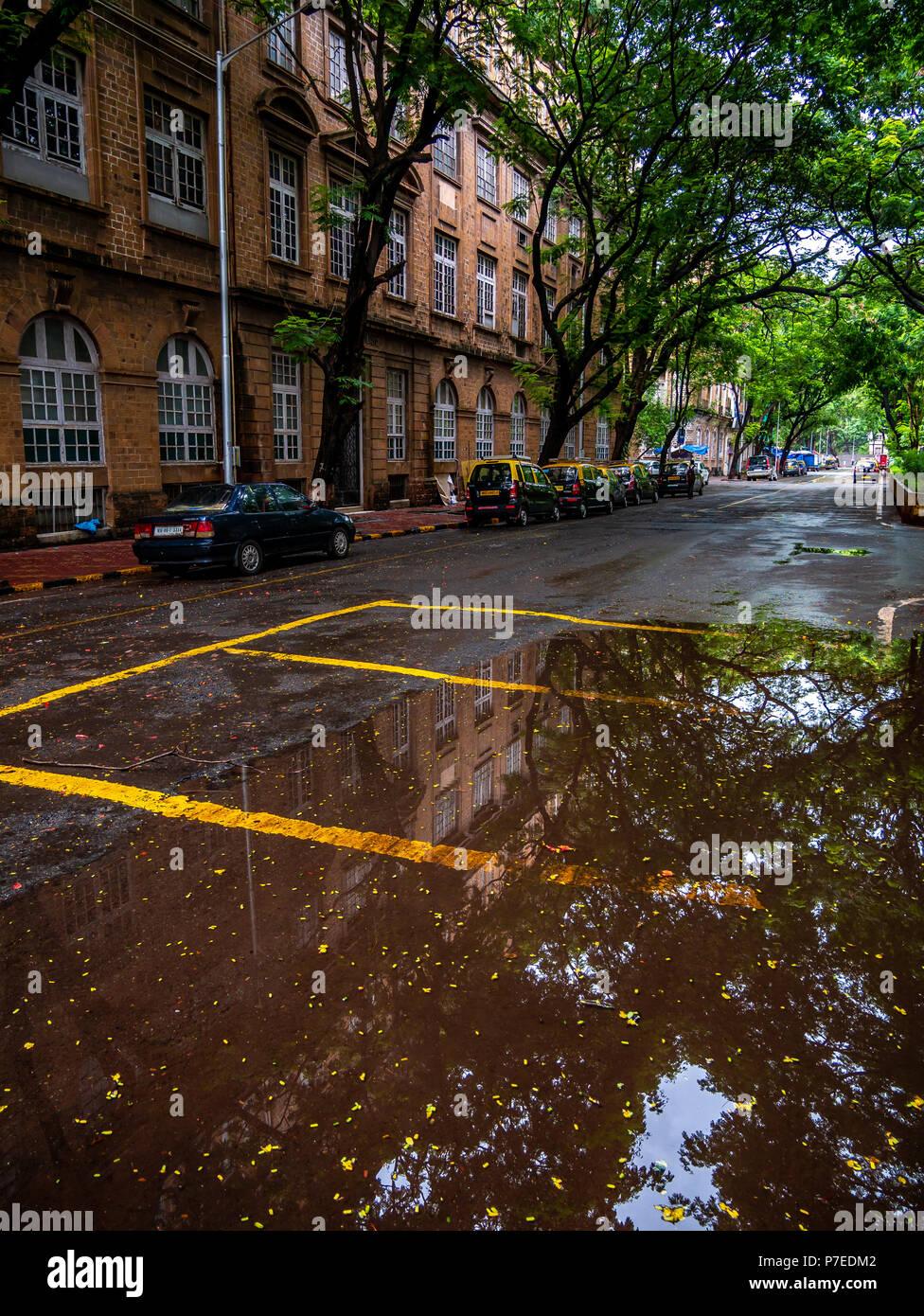 Ballard Parking