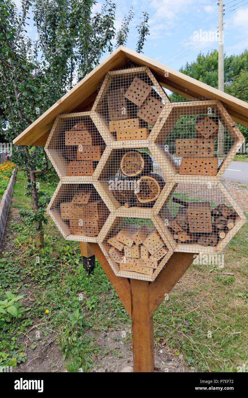 Wooden bee hotel pollinator housing in a community garden, Vancouver, BC, Canada - Stock Image