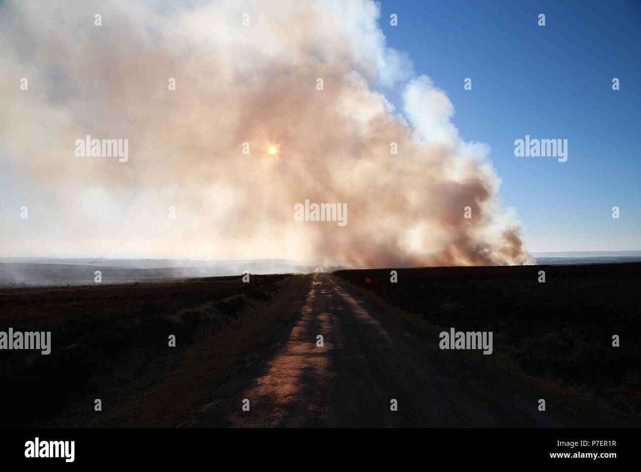 Queensland bush fire - Stock Image