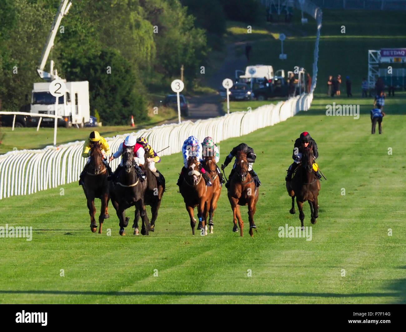 Lingfield Races - Stock Image