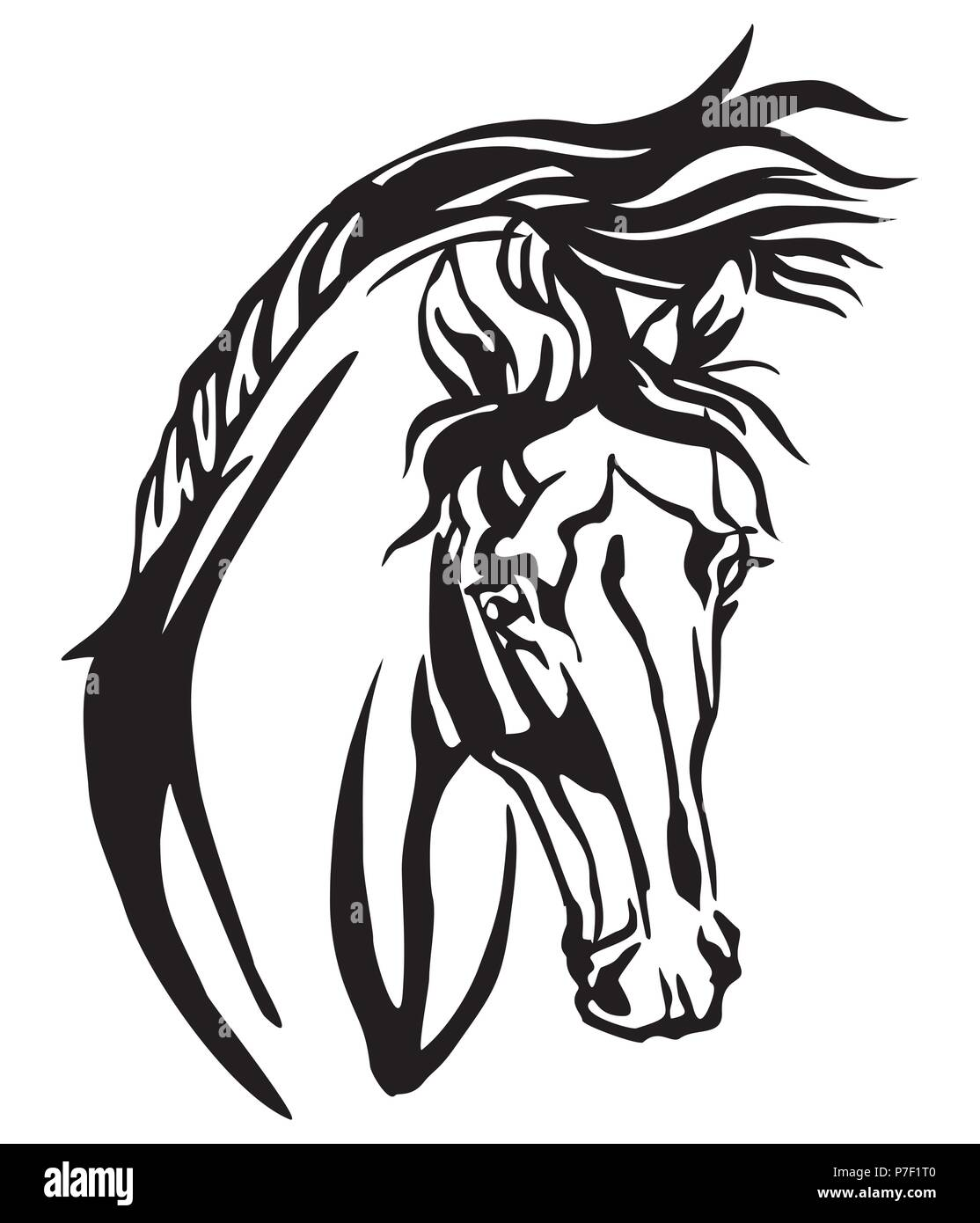 Decorative Portrait Of Arabian Horse Vector Isolated Illustration In Black Color On White Background Image For Design And Tattoo Stock Vector Image Art Alamy