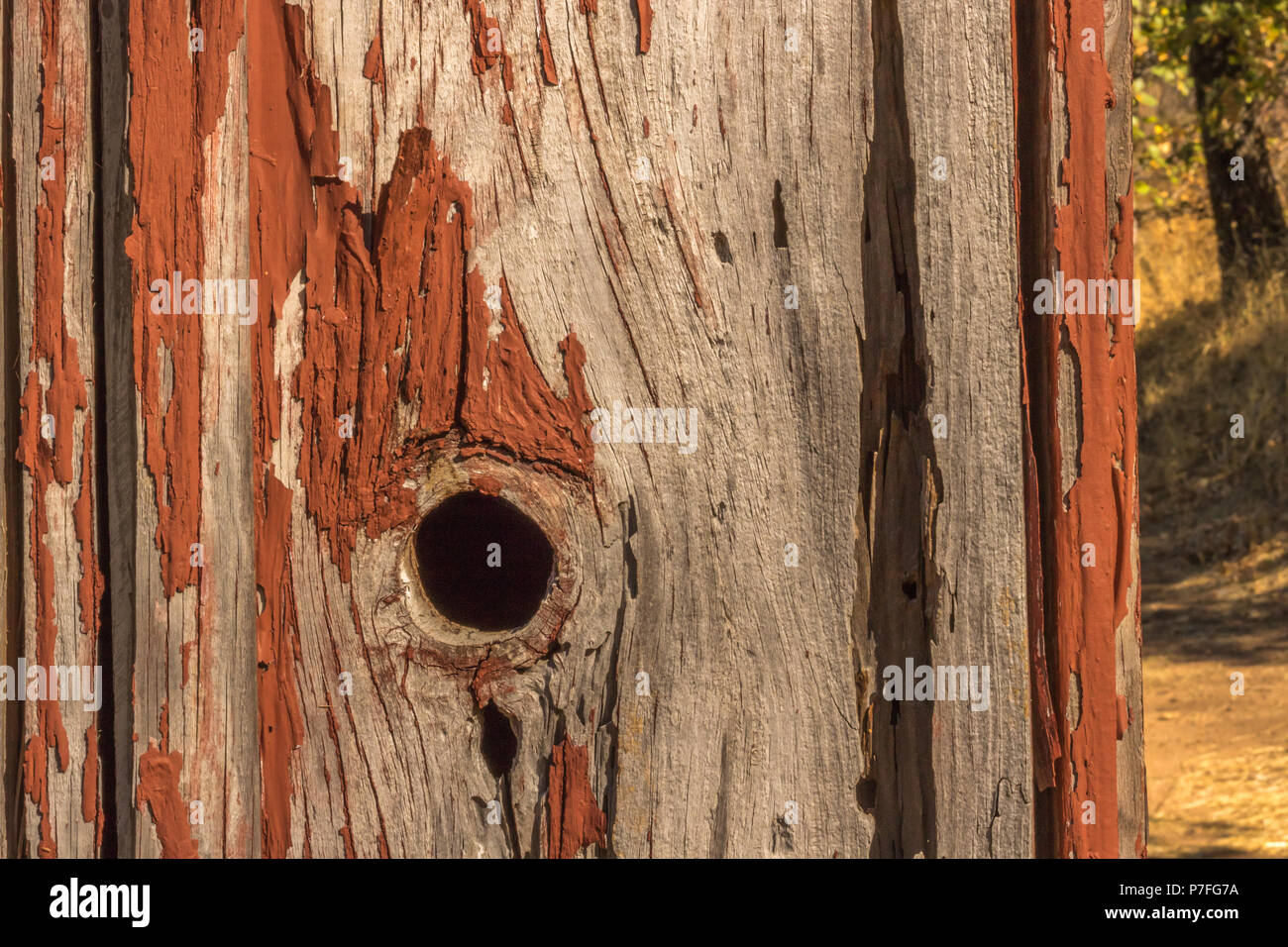 Detail of old, peeling red paint on small, wood out building background - Stock Image