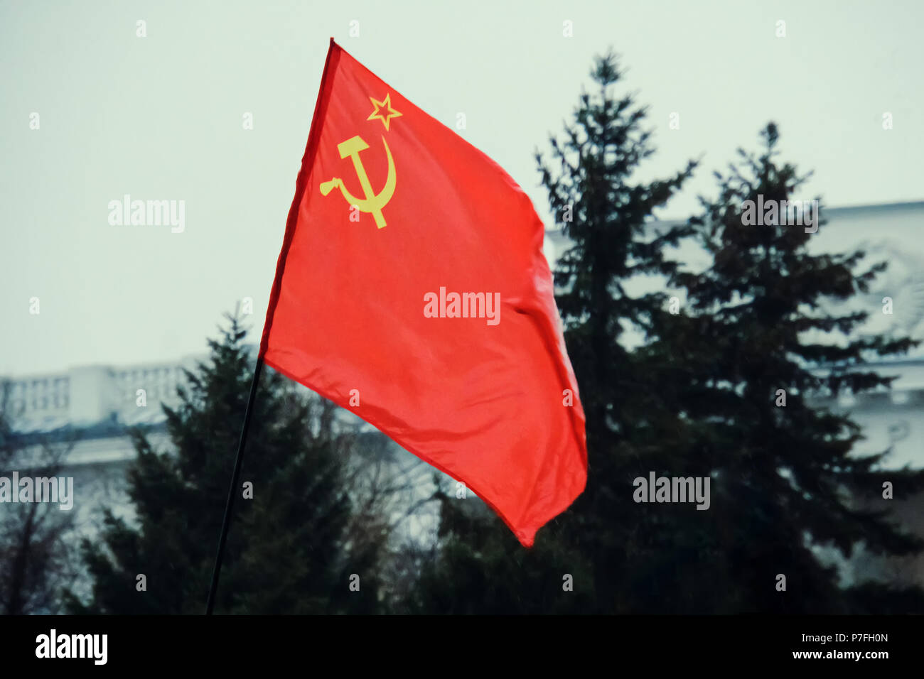 Union of Soviet Socialist Republics USSR HD flag. The flag with the hammer and sickle on a background of green trees. May day demonstration. Parade in Stock Photo