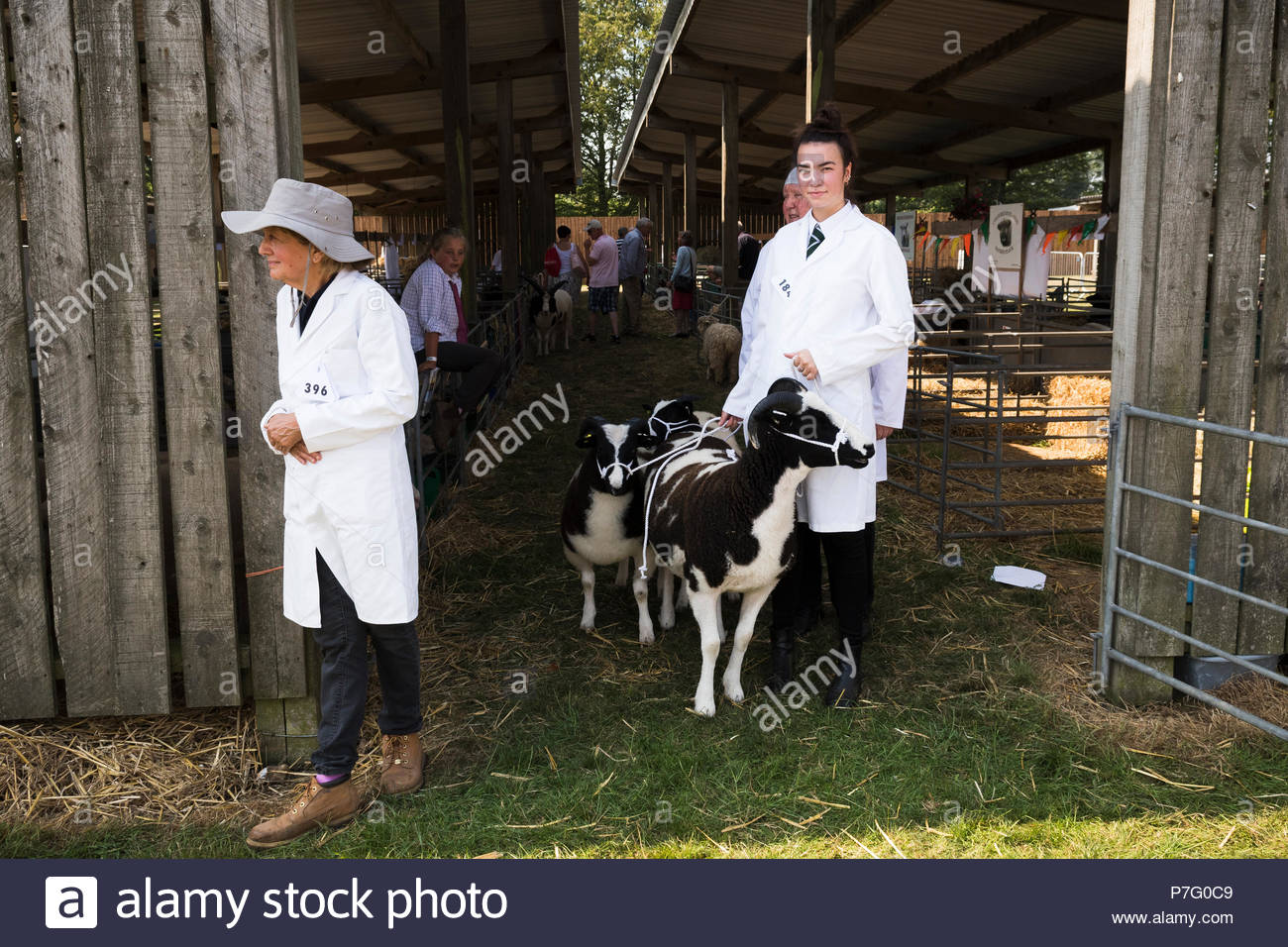 Detling, Kent, UK. 6th July 2018. The Kent County Show opens its annual three day extravaganza of all things agricultural with prize-giving to everything from livestock to local soft fruit produce and cake-making. Stock Photo