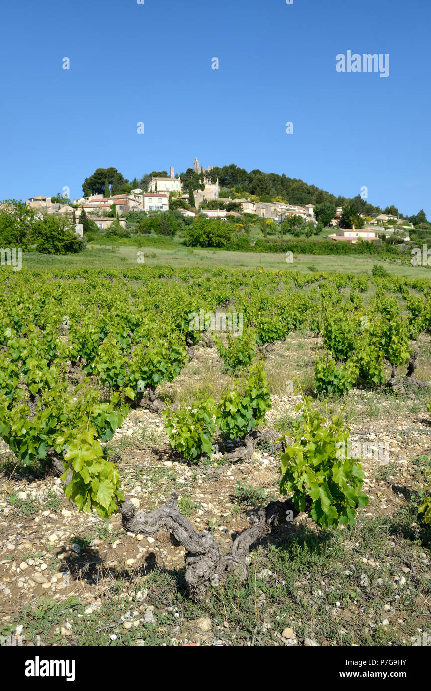 Village of Rasteau and Côtes-du-Rhône Vineyard or Vineyards Vaucluse Provence France - Stock Image