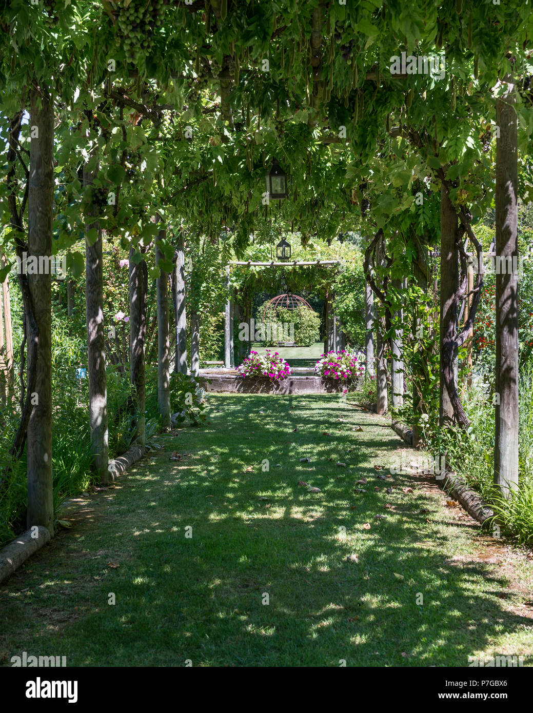 Shaded Pergola In Garden Grounds Of 18th Century Chateaux In St Remy De  Provence   Stock
