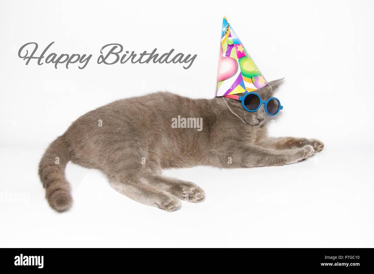 Happy Birthday Card With Funny Cat Wearing Sunglasses And Party Hat