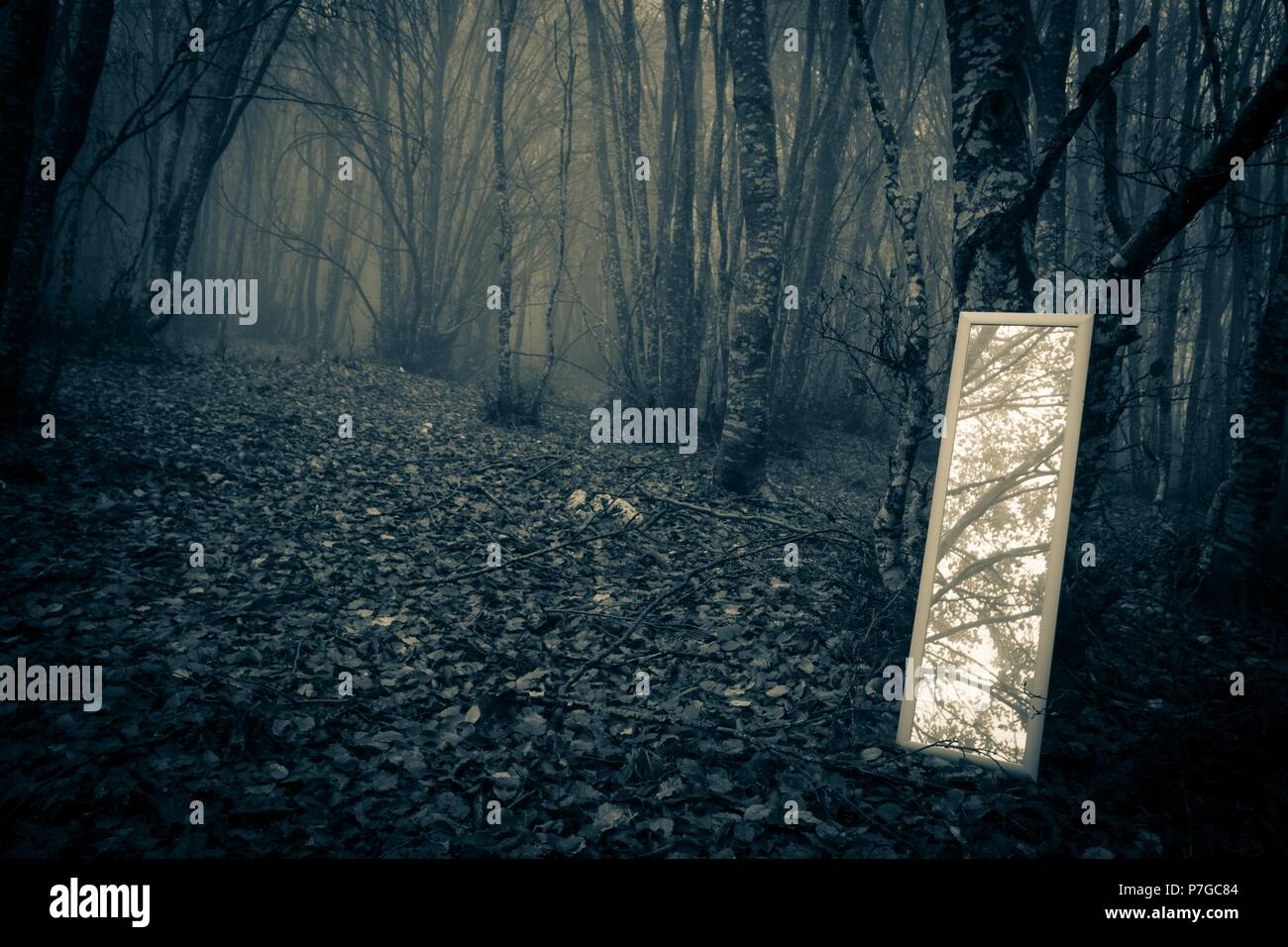 Little mirror in the misty forest Stock Photo
